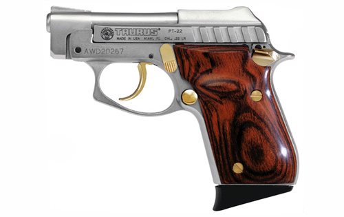 Taurus PT-22 photo (7 of 7)