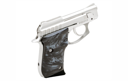 Taurus PT-25 photo (3 of 6)